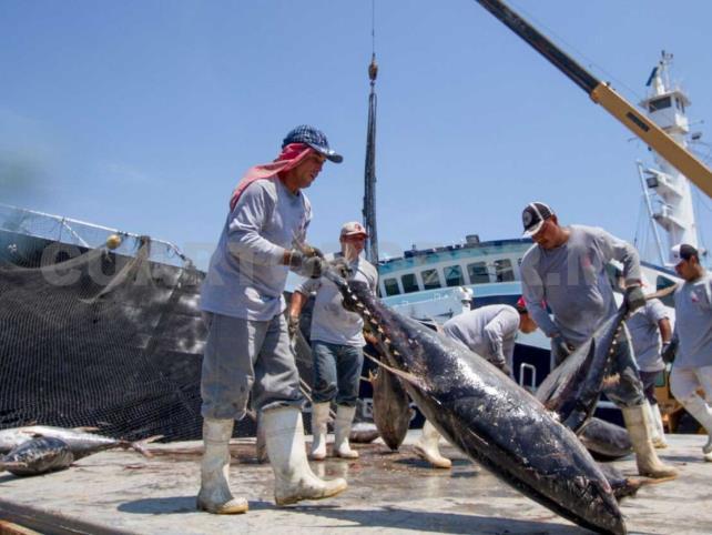 """""""Malos y feos"""", subsidios a pesca"""