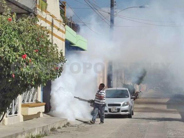 Inicia primera jornada de fumigación en Tonalá