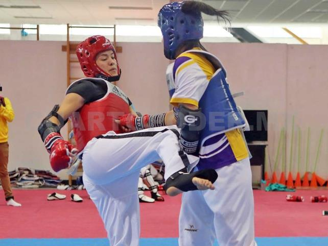 Taekwondo mexicano va por título de Panamericano