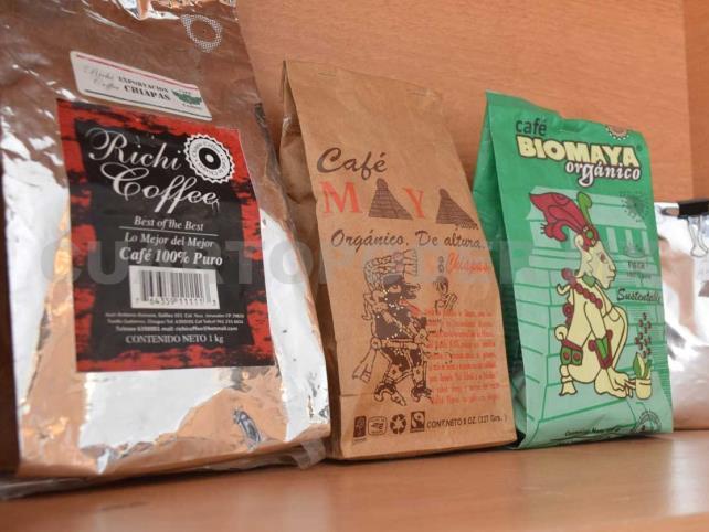 Productores de café recibirán más de 340 mdp por Fircafé