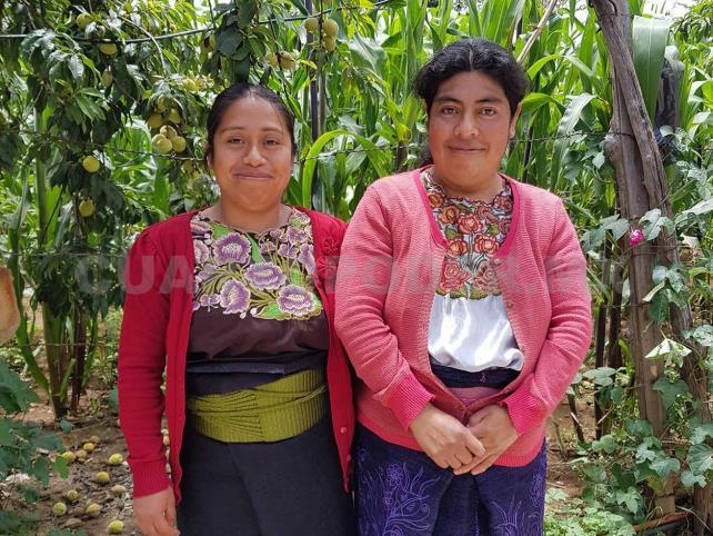 Los pueblos originarios, vivos en el arte textil