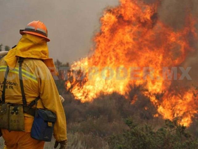 Suman 39 incendios forestales en 2019