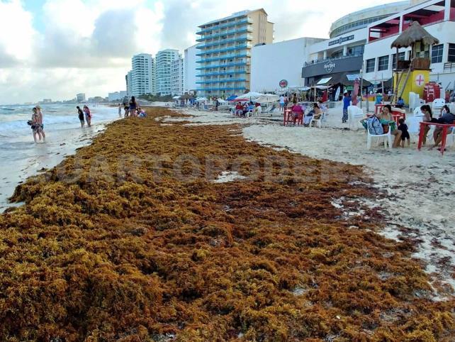 Rescatan a turista en Playa del Carmen