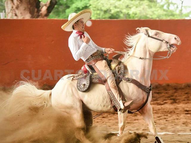 Walter Herrera y Real de Montecristo, los reyes