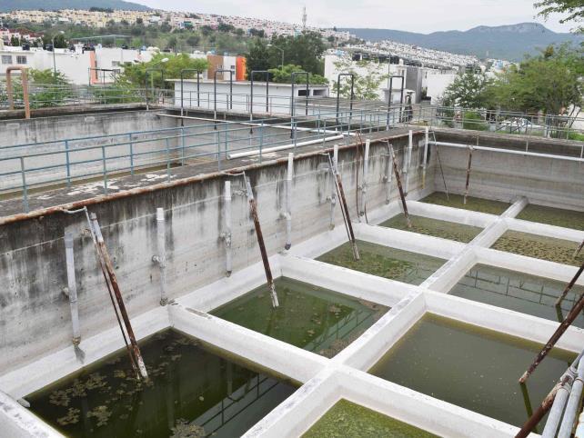 Bajos, los estándares de calidad del agua