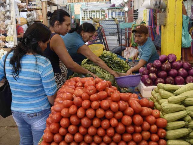 Productores de tomate, en crisis
