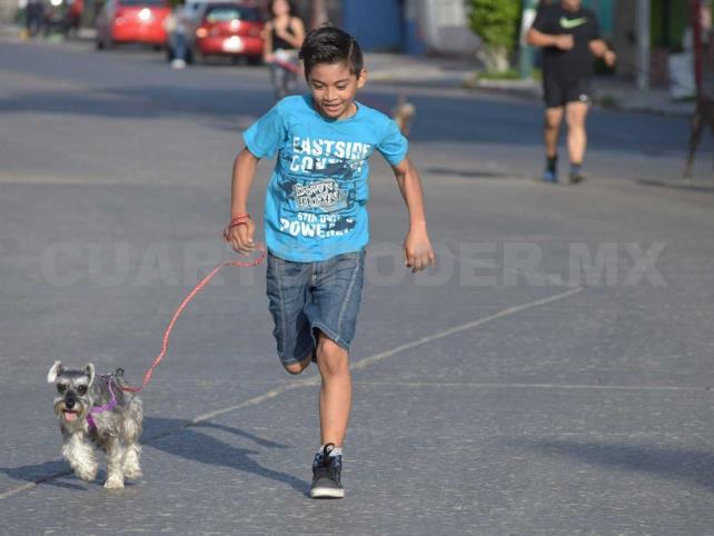 Hoy es el día para correr con tu mascota