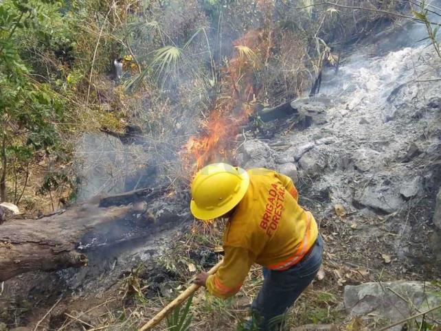 Reportan 13 incendios forestales