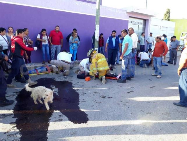 Camino a la escuela, tres menores fueron arrollados