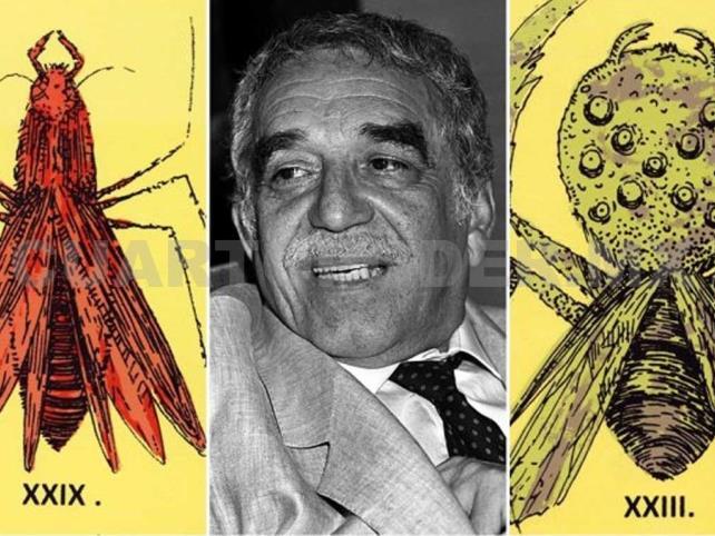 Los insectos en la obra de García Márquez