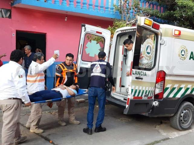 Enjambre ataca a familia; mujer es hospitalizada