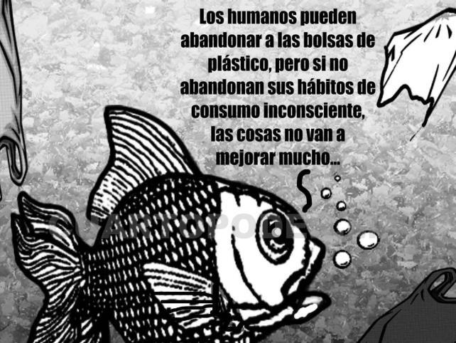 Prohibición de plásticos desechables