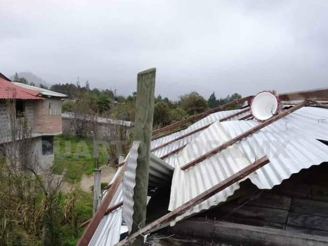"""Depresión tropical """"Iota"""" provoca caída de árboles y láminas"""