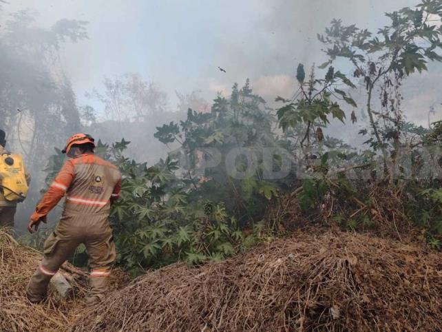 Fuego consume tres hectáreas de pastizal