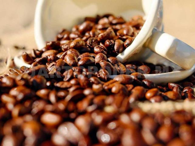 Renovación de plantas de café perfila ventas