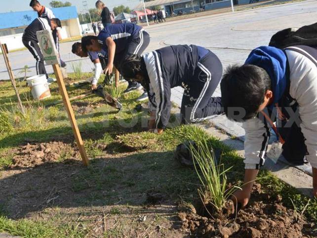 Realizan campaña de reforestación en Tuxtla