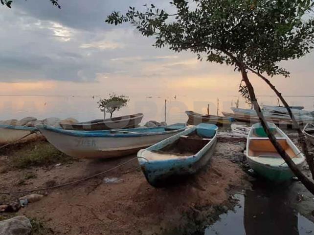 Reportan desaparición de pescadores de Paredón