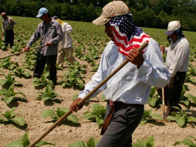Reclaman a EU violaciones de derechos laborales