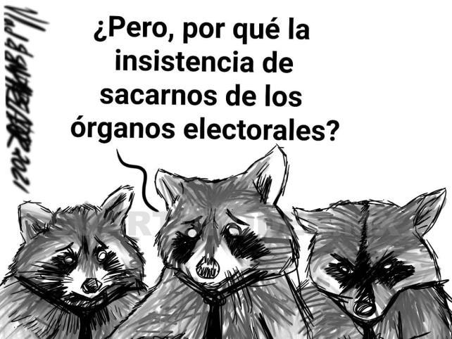 Posibilidades y límites de la reforma electoral